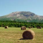 牧草地と駒ケ岳