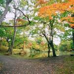 大沼湖畔散策路石楠花橋を望む