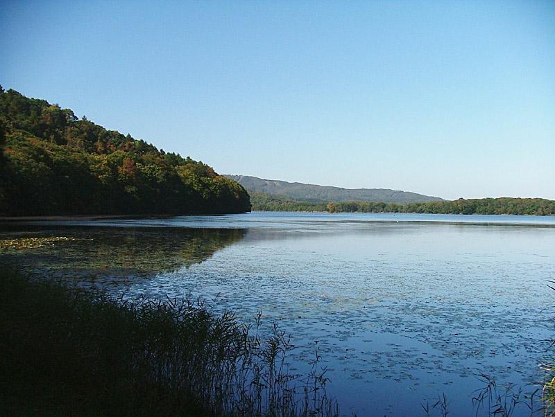 神秘の沼蓴菜沼