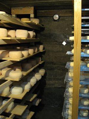 熟成庫とチーズ 002_R.jpg