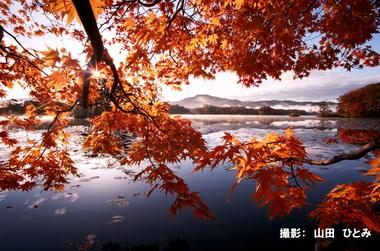 10月101「朝日に染まる」.jpg