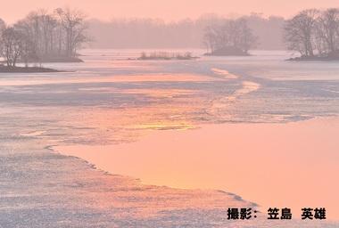 3月140「桜色の春みなも」.jpg