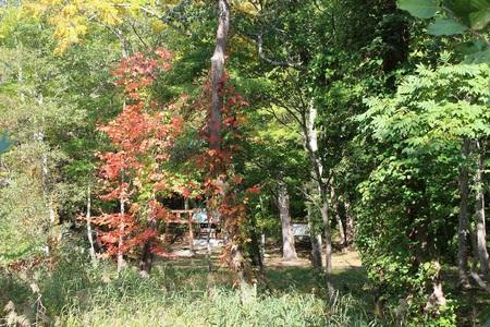 駒ヶ岳神社1.JPGのサムネイル画像のサムネイル画像