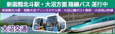 JR新函館北斗駅 ↔ 大沼方面 路線バス