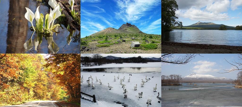 大沼の自然と四季