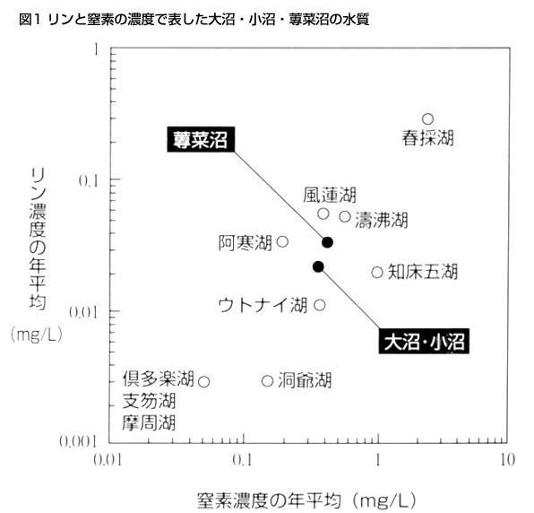 図1 リンと窒素の濃度で表した大沼・小沼・蓴菜沼の水質