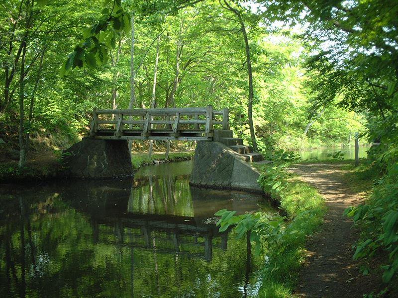 豊富な自然を気軽に散策できる大沼周辺