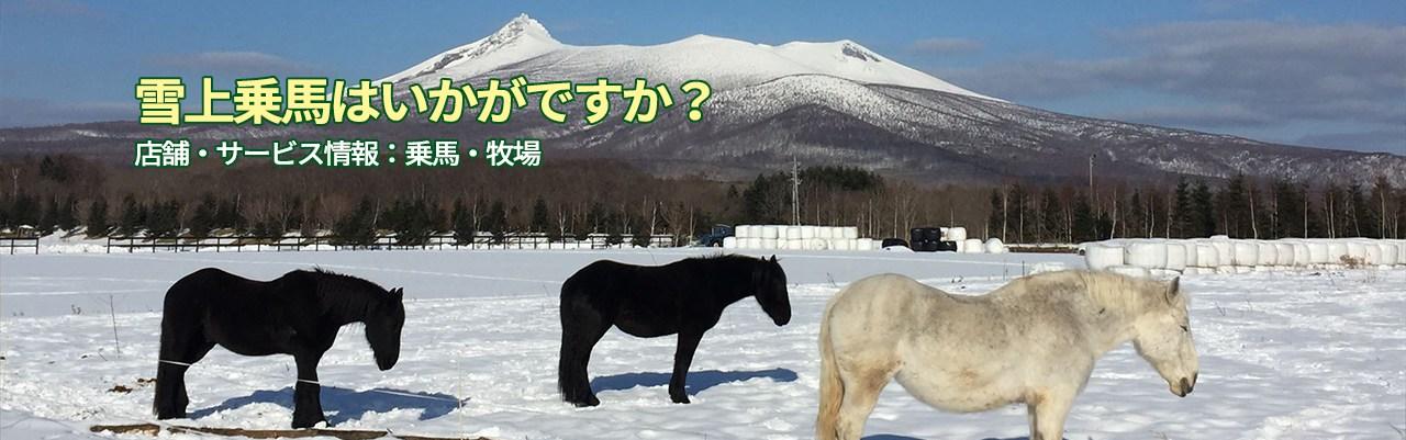 雪上乗馬はいかがですか?